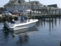 Boat Shows twice a year free with free sea trials